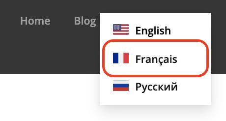 multilingual_site_8.png